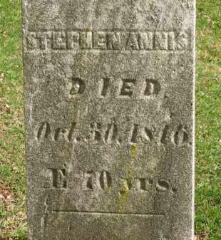 ANNIS, STEPHEN - Lorain County, Ohio | STEPHEN ANNIS - Ohio Gravestone Photos