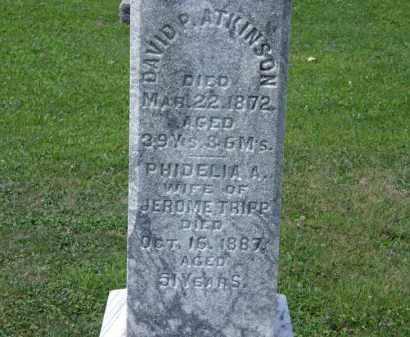 TRIPP, PHIDELIA - Lorain County, Ohio | PHIDELIA TRIPP - Ohio Gravestone Photos