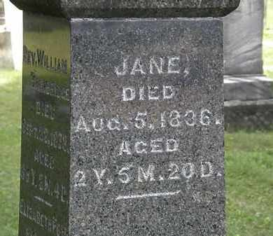 BAINBRIDGE, JANE - Lorain County, Ohio | JANE BAINBRIDGE - Ohio Gravestone Photos