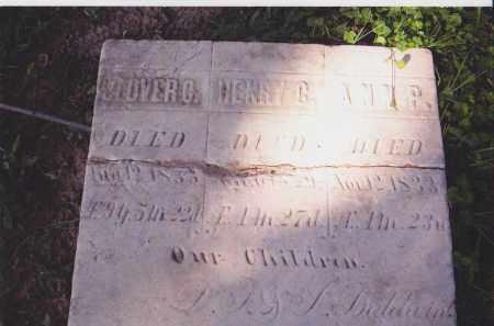 BALDWIN, ANN P. - Lorain County, Ohio | ANN P. BALDWIN - Ohio Gravestone Photos