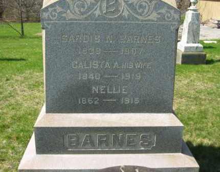 BARNES, SARDIS N. - Lorain County, Ohio | SARDIS N. BARNES - Ohio Gravestone Photos