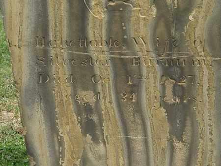 BARNUM, SILVESTOR - Lorain County, Ohio | SILVESTOR BARNUM - Ohio Gravestone Photos
