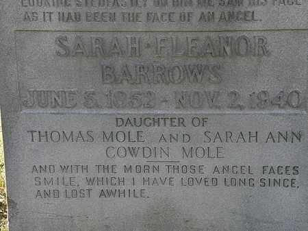 MOLE, SARAH ANN - Lorain County, Ohio | SARAH ANN MOLE - Ohio Gravestone Photos