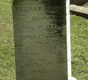 HOVE BARTLETT, CATHERINE - Lorain County, Ohio | CATHERINE HOVE BARTLETT - Ohio Gravestone Photos