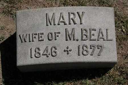 BEAL, MARY - Lorain County, Ohio | MARY BEAL - Ohio Gravestone Photos
