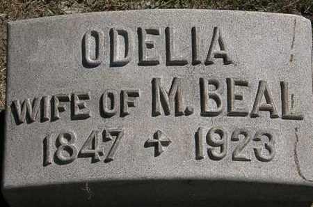 BEAL, ODELIA - Lorain County, Ohio | ODELIA BEAL - Ohio Gravestone Photos