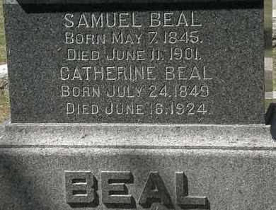 BEAL, CATHARINE - Lorain County, Ohio | CATHARINE BEAL - Ohio Gravestone Photos