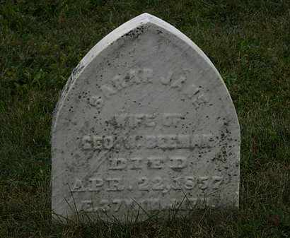 BEEMAN, SARAH JANE - Lorain County, Ohio   SARAH JANE BEEMAN - Ohio Gravestone Photos