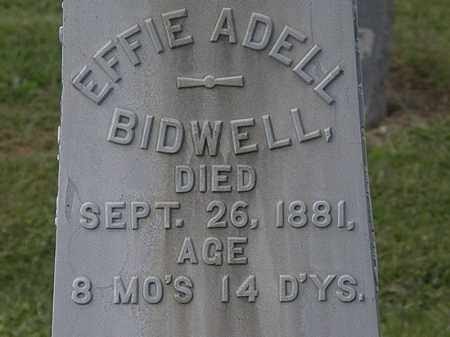 BIDWELL, EFFIE ADELL - Lorain County, Ohio | EFFIE ADELL BIDWELL - Ohio Gravestone Photos