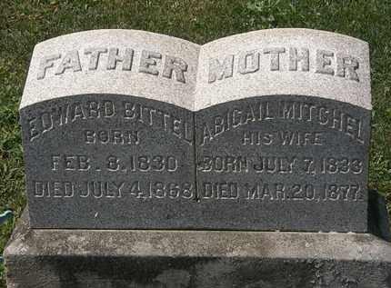 MITCHELL BITTEL, ABIGAIL - Lorain County, Ohio | ABIGAIL MITCHELL BITTEL - Ohio Gravestone Photos