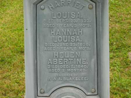 BLAKELEE, HARRIET LOUISA - Lorain County, Ohio | HARRIET LOUISA BLAKELEE - Ohio Gravestone Photos