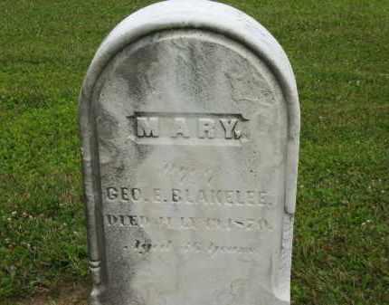 BLAKELEE, MARY - Lorain County, Ohio | MARY BLAKELEE - Ohio Gravestone Photos