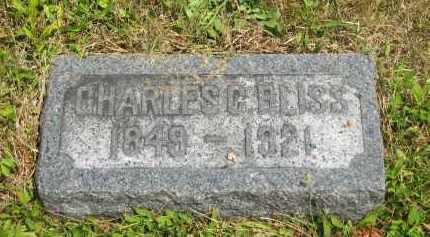 BLISS, CHARLES C. - Lorain County, Ohio | CHARLES C. BLISS - Ohio Gravestone Photos