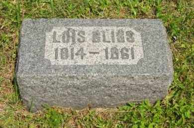 BLISS, LOIS - Lorain County, Ohio | LOIS BLISS - Ohio Gravestone Photos