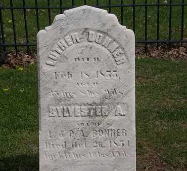 BONNER, LUTHER - Lorain County, Ohio | LUTHER BONNER - Ohio Gravestone Photos