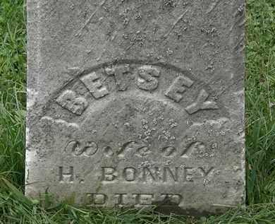 BONNEY, H. - Lorain County, Ohio | H. BONNEY - Ohio Gravestone Photos