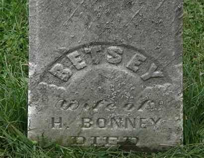 BONNEY, BETSEY - Lorain County, Ohio   BETSEY BONNEY - Ohio Gravestone Photos
