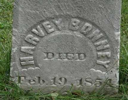 BONNEY, HARVEY - Lorain County, Ohio | HARVEY BONNEY - Ohio Gravestone Photos