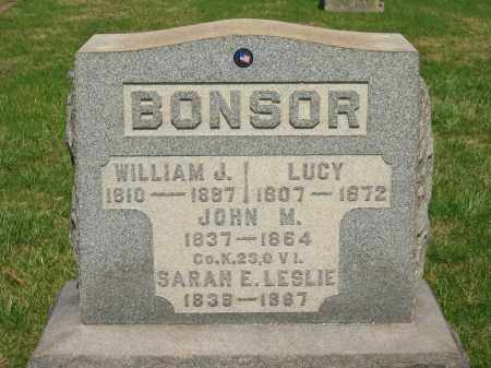 BONSOR, LUCY - Lorain County, Ohio | LUCY BONSOR - Ohio Gravestone Photos