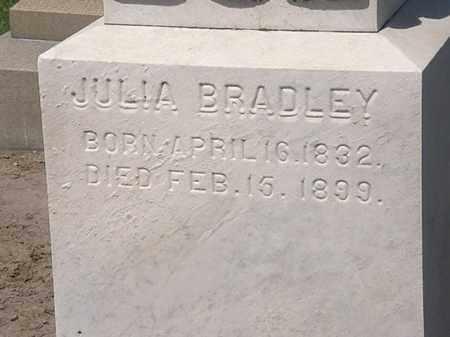 BRADLEY, JULIA - Lorain County, Ohio   JULIA BRADLEY - Ohio Gravestone Photos