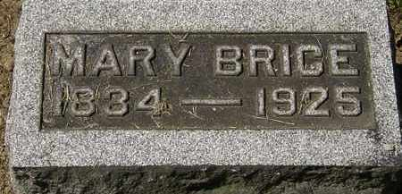 BRICE, MARY - Lorain County, Ohio | MARY BRICE - Ohio Gravestone Photos