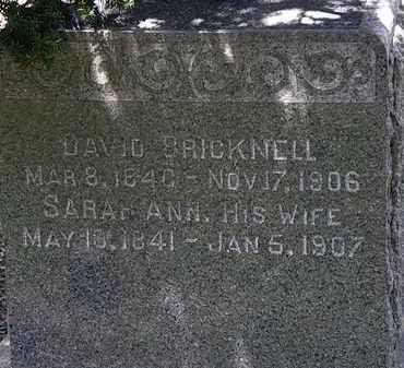 BRICKNELL, DAVID - Lorain County, Ohio | DAVID BRICKNELL - Ohio Gravestone Photos