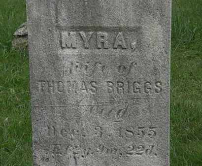 BRIGGS, THOMAS - Lorain County, Ohio | THOMAS BRIGGS - Ohio Gravestone Photos