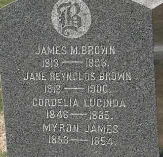 BROWN, CORDELIA LUCINDA - Lorain County, Ohio | CORDELIA LUCINDA BROWN - Ohio Gravestone Photos
