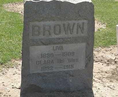 BROWN, LIVA - Lorain County, Ohio | LIVA BROWN - Ohio Gravestone Photos