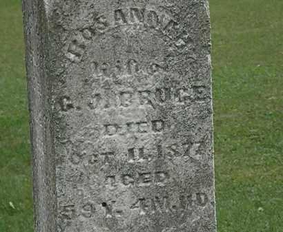 BRUCE, ROSANNAH - Lorain County, Ohio   ROSANNAH BRUCE - Ohio Gravestone Photos