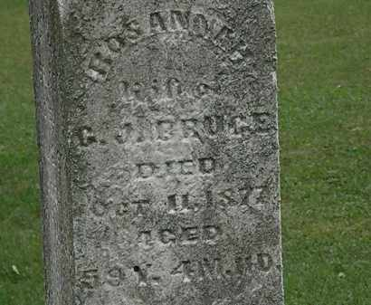 BRUCE, C. J. - Lorain County, Ohio | C. J. BRUCE - Ohio Gravestone Photos