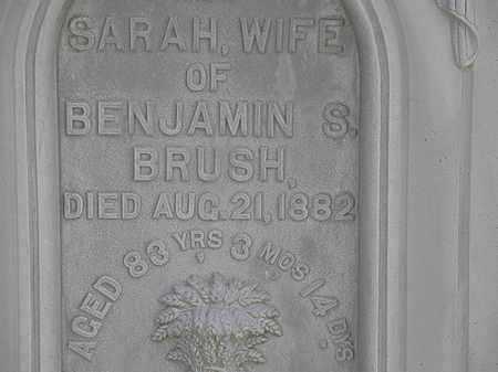 BRUSH, SARAH - Lorain County, Ohio   SARAH BRUSH - Ohio Gravestone Photos
