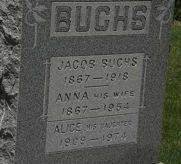 BUCHS, JACOB - Lorain County, Ohio | JACOB BUCHS - Ohio Gravestone Photos