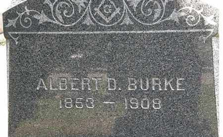 BURKE, ALBERT D. - Lorain County, Ohio   ALBERT D. BURKE - Ohio Gravestone Photos