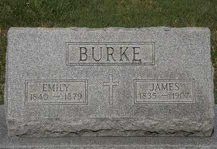 BURKE, EMILY - Lorain County, Ohio | EMILY BURKE - Ohio Gravestone Photos