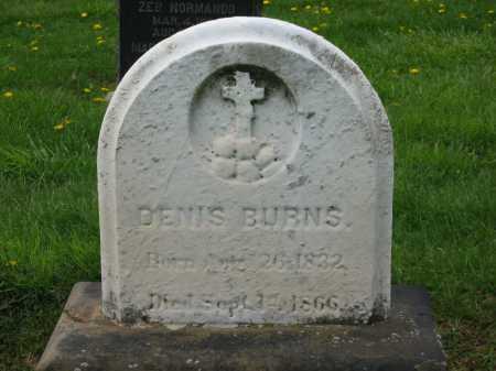 BURNS, DENNIS - Lorain County, Ohio   DENNIS BURNS - Ohio Gravestone Photos