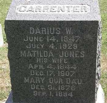 CARPENTER, MARY - Lorain County, Ohio | MARY CARPENTER - Ohio Gravestone Photos