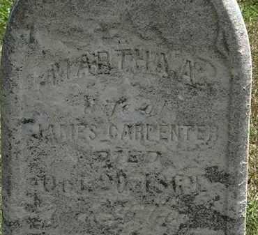 CARPENTER, JAMES - Lorain County, Ohio | JAMES CARPENTER - Ohio Gravestone Photos