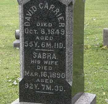 CARRIER, SABRA - Lorain County, Ohio | SABRA CARRIER - Ohio Gravestone Photos
