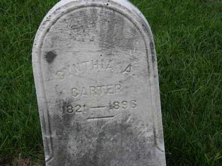 CARTER, CYNTHIA A. - Lorain County, Ohio   CYNTHIA A. CARTER - Ohio Gravestone Photos