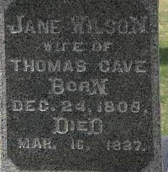WILSON CAVE, JANE - Lorain County, Ohio | JANE WILSON CAVE - Ohio Gravestone Photos