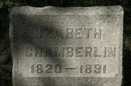 CHAMBERLIN, ELIZABETH - Lorain County, Ohio | ELIZABETH CHAMBERLIN - Ohio Gravestone Photos