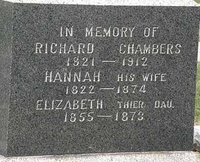 CHAMBERS, ELIZABETH - Lorain County, Ohio | ELIZABETH CHAMBERS - Ohio Gravestone Photos