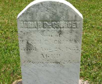 CHAPMAN, ADRIAN DECOURCEY - Lorain County, Ohio | ADRIAN DECOURCEY CHAPMAN - Ohio Gravestone Photos