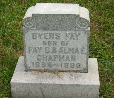 CHAPMAN, FAY C. - Lorain County, Ohio | FAY C. CHAPMAN - Ohio Gravestone Photos