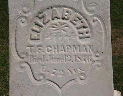 CHAPMAN, T.F. - Lorain County, Ohio   T.F. CHAPMAN - Ohio Gravestone Photos