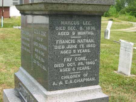 CHAPMAN, FAY CONE - Lorain County, Ohio   FAY CONE CHAPMAN - Ohio Gravestone Photos