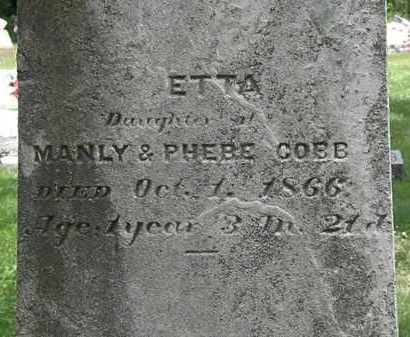 COBB, PHEBE - Lorain County, Ohio | PHEBE COBB - Ohio Gravestone Photos