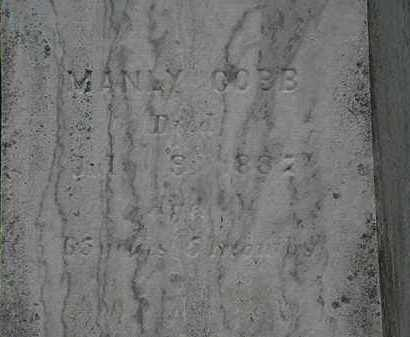 COBB, MANLY - Lorain County, Ohio   MANLY COBB - Ohio Gravestone Photos