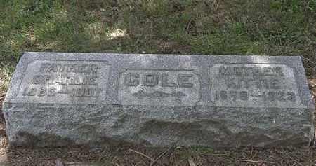 COLE, CHARLIE - Lorain County, Ohio | CHARLIE COLE - Ohio Gravestone Photos